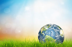 Earth in Fresh spring green grass Royalty Free Stock Images