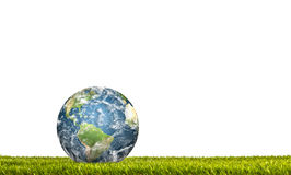 Earth in Fresh spring green grass Royalty Free Stock Photo