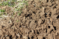Earth freshly dug. Fresh digging soil in the garden Royalty Free Stock Images