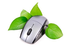 Earth Friendly Computer Concept Stock Photo