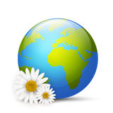 Earth globe with daisies Royalty Free Stock Image