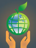 Earth globe environment concept Stock Image