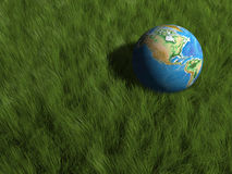 Earth globe in grass Royalty Free Stock Image