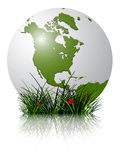 Earth globe and grass reflected. Against white background; abstract vector art illustration; image contains transparency and clipping masks stock illustration