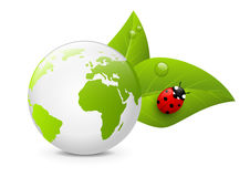 Earth globe with green leaves Stock Images