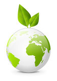Earth globe with green leaves. On white backgrond Stock Image