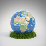 Earth globe growing in a patch Stock Images