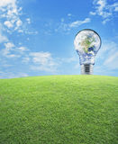 Earth globe in light bulb with green grass field over blue sky, Royalty Free Stock Photos