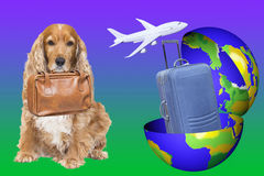 An Earth globe with a suitcase in and a dog ready to go for trip Royalty Free Stock Photos