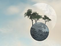 Earth Globe Trees Stock Photos
