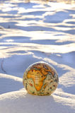 Earth globe on winter snow concept Stock Photos