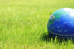 Earth on grass Royalty Free Stock Photos