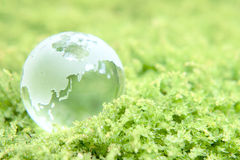 Earth on grass Royalty Free Stock Photo