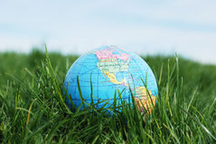 Earth on grass Stock Images