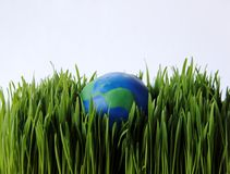 Earth in grass Royalty Free Stock Photo