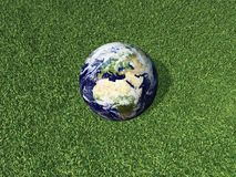 Earth on he Grass. 3d render of Earth lying on grass Stock Photography