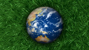 Earth on Grass Background 3D Animation stock footage