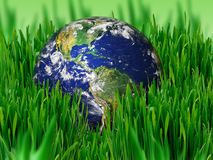 Earth in green Stock Image