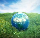 Earth in a green  field of grass. Realistic Earth in a green field of grass Stock Photo