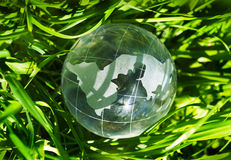 Earth in green grass Royalty Free Stock Images