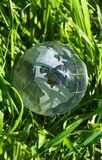 Earth in green grass Stock Photo