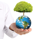 Earth in  the hand Royalty Free Stock Photos