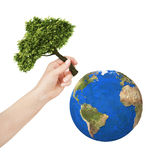 Earth, hand planting a tree on the planet. Isolate on white background Royalty Free Stock Photography