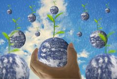 Earth, in a handful, with trees growing on top, With bright sky as the background and rain. Elements of this image furnished by NASA stock photography