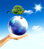 Earth in the hands Royalty Free Stock Photo