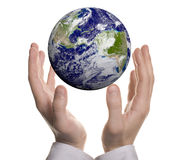 Earth in hands. Over white background royalty free illustration