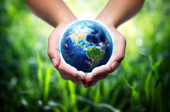 Earth in hands - environment concept. Earth in hands - grass background - environment concept - Usa royalty free stock images
