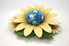 Earth inside yellow flower Stock Images