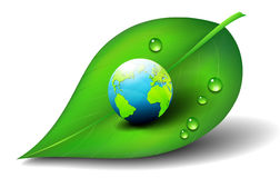 Earth on Leaf Icon Symbol. Earth on Leaf with Water Drops Stock Image