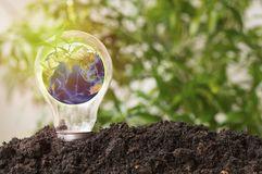 Earth in light bulb grow up l, concept in save world, Energy and environment conservation, Elements of this image funeshed. Earth in light bulb grow up from soil Stock Photography