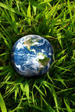 Earth lost in grass. Earth globe laying in the grass Stock Images