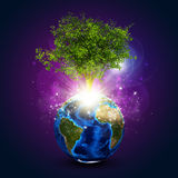 Earth with magical green tree and rays of light Stock Photos