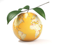 Earth map made on a peeled orange Royalty Free Stock Image