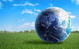 Earth on a meadow. Earth globe on a green  field of grass Royalty Free Stock Images
