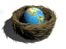 Earth in nest Royalty Free Stock Photos