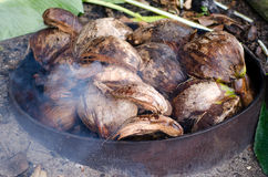Earth Oven - Pacific Island royalty free stock photos