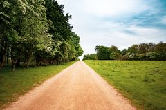 Earth path in the country side stock images