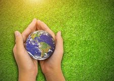 Earth planet in  asian Children hand green grass background Royalty Free Stock Image