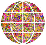 Earth- is the planet of flowers concept Royalty Free Stock Images