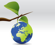 Earth planet with leaves Stock Photo