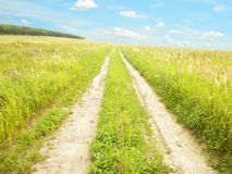 Earth road in the field Royalty Free Stock Image
