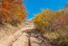 Earth road to mountain Demerdzhi, Crimean peninsula Stock Photos