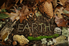 Earth spelled in twigs on forest floor stock image
