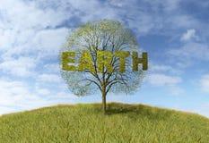 Earth text on tree Royalty Free Stock Photos