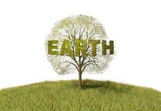 Earth text on tree Stock Photo