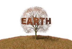 Earth text on tree Royalty Free Stock Image